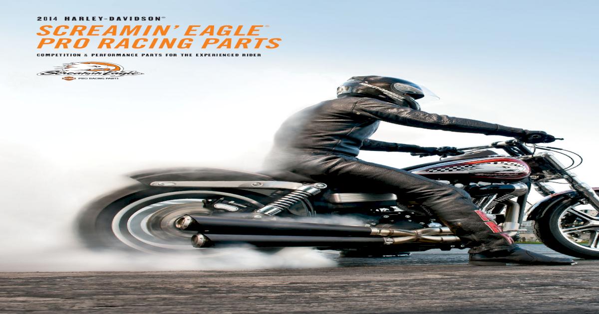 2014 Screamin Eagle Catalog